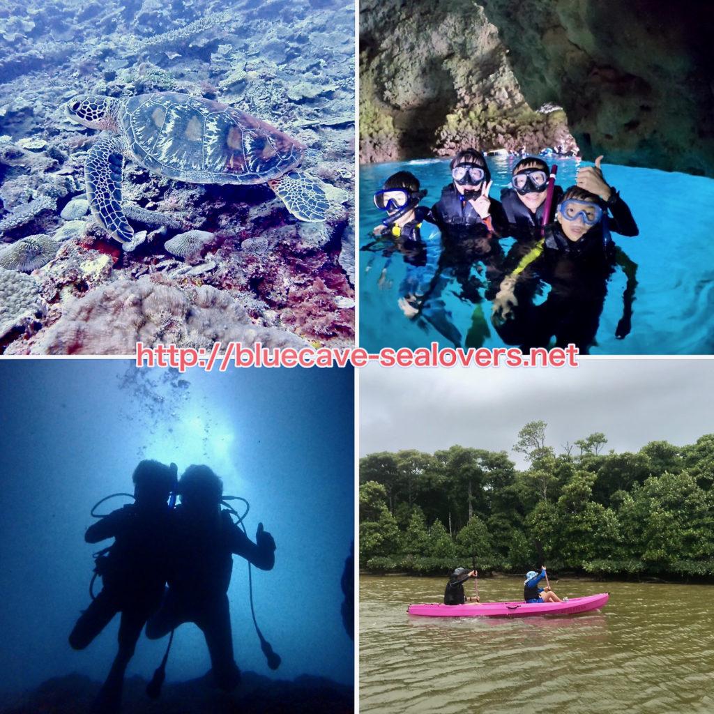 青の洞窟ダイビング 青の洞窟シュノーケリング ファンダイビング 魔ングローブカヤック