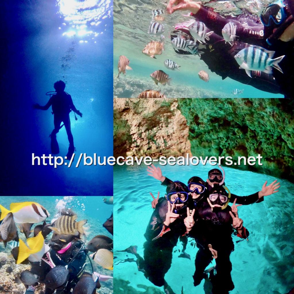 青の洞窟ボート体験ダイビング 青の洞窟ボートシュノーケリング