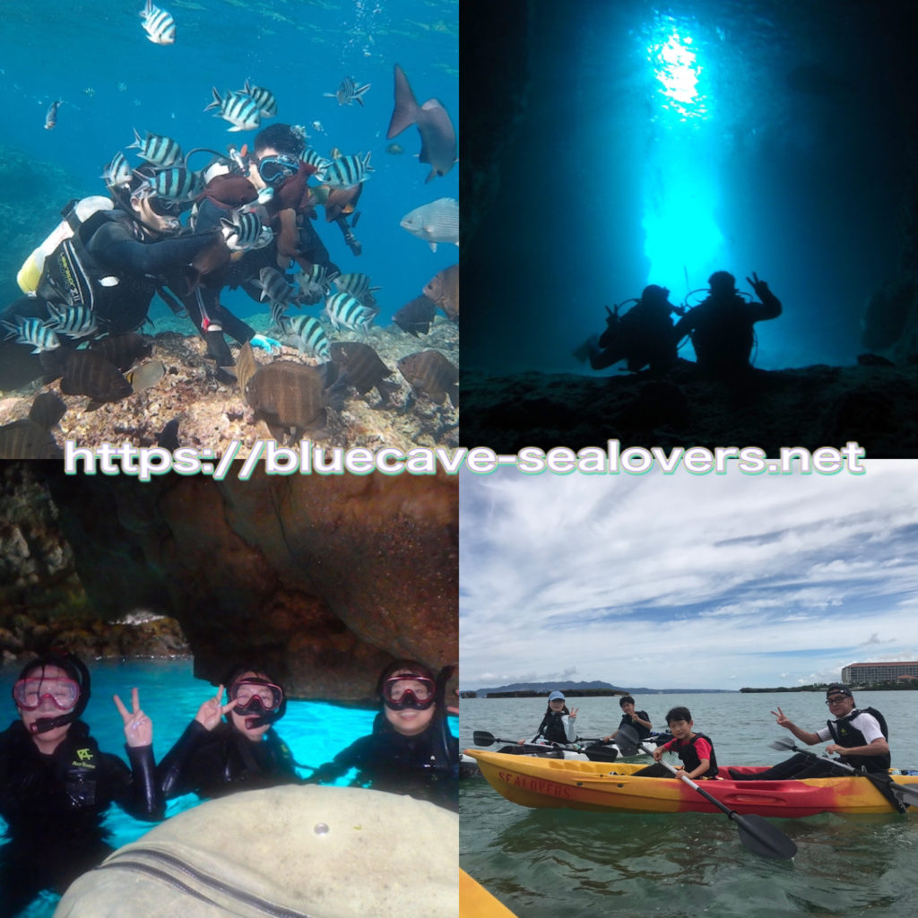 青の洞窟 ダイビング シュノーケリング シーカヤック