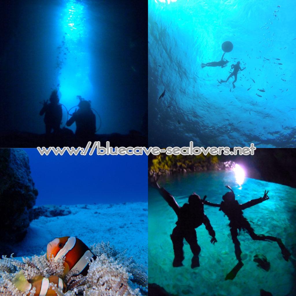 青の洞窟 ダイビング シュノーケリング クマノミ