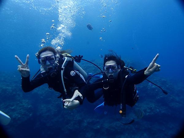仲間と一緒にダイビング