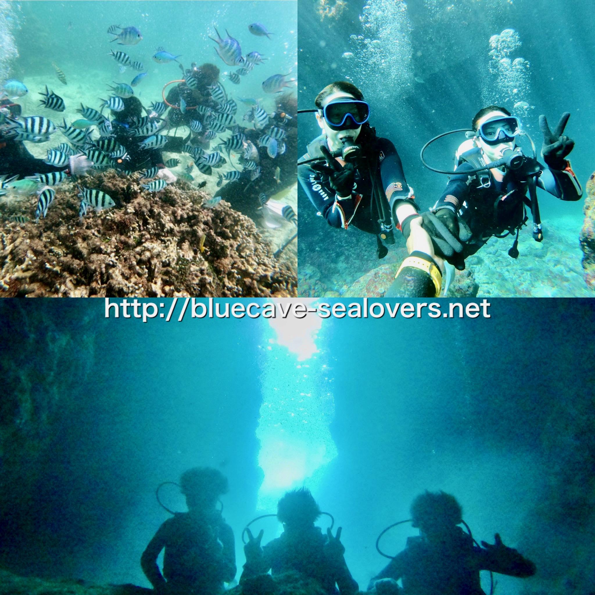 青の洞窟ボート体験ダイビング