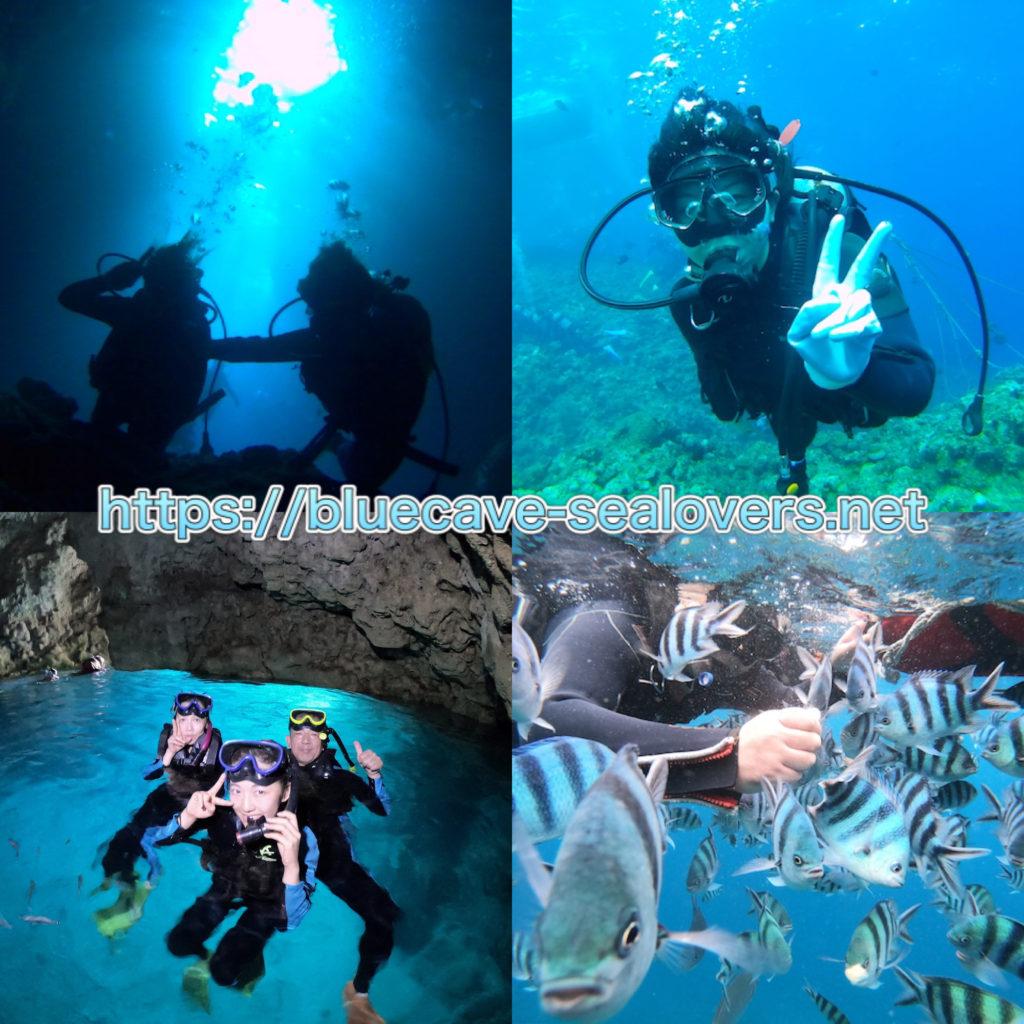 青の洞窟 ダイビング シュノーケリング