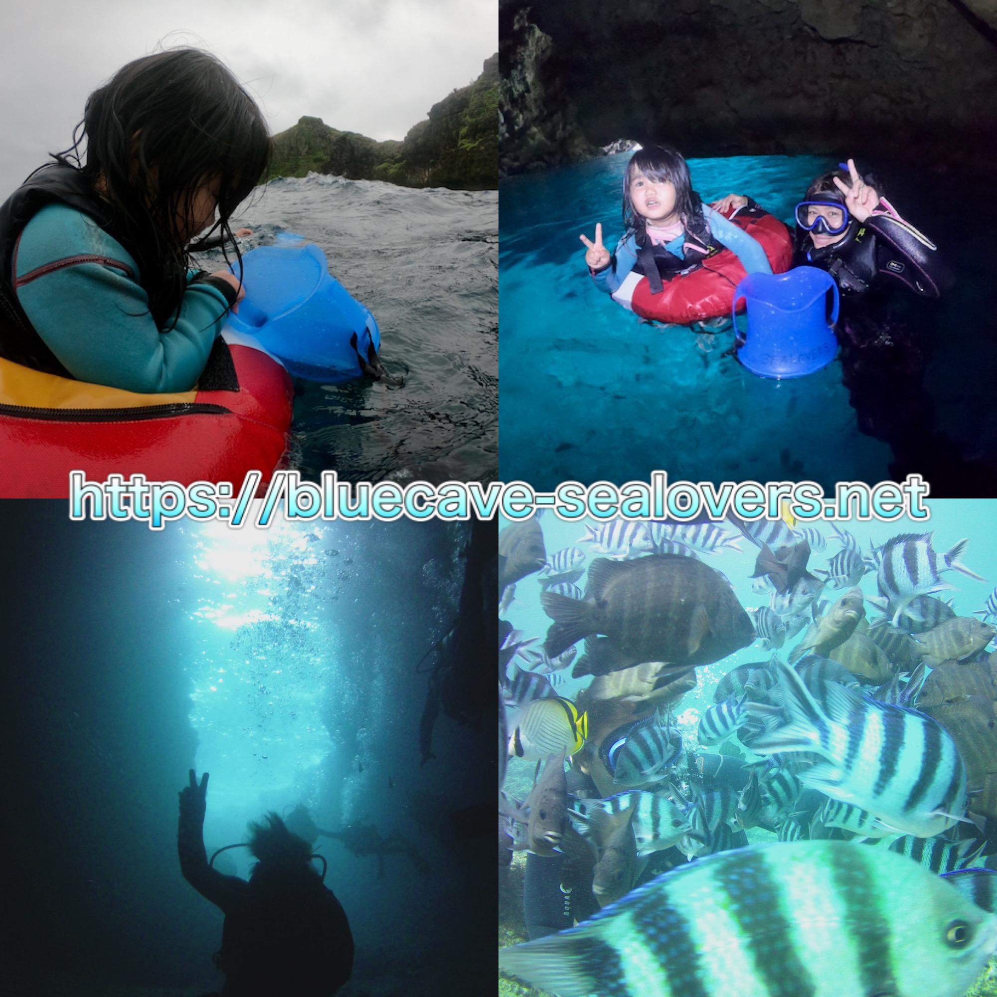 青の洞窟 体験ダイビング シュノーケリング
